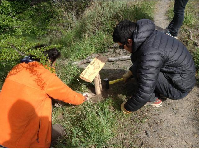 Reforestemos patagonia firma alianza con ong ama torres for Viveros en paine